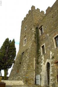 M.castello 1